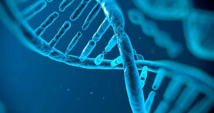 Investigación asocia 102 genes con el riesgo de sufrir autismo