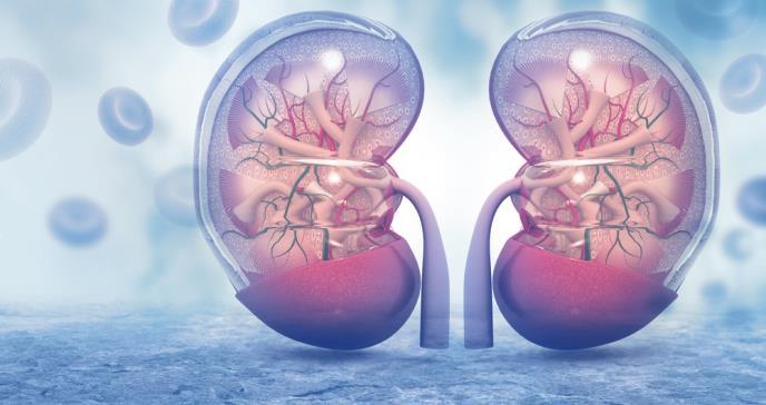 La enfermedad renal podría aumentar las probabilidades de infección