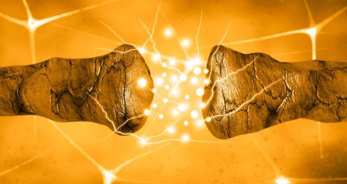 La dopamina modula la experiencia de recompensa provocada por la música