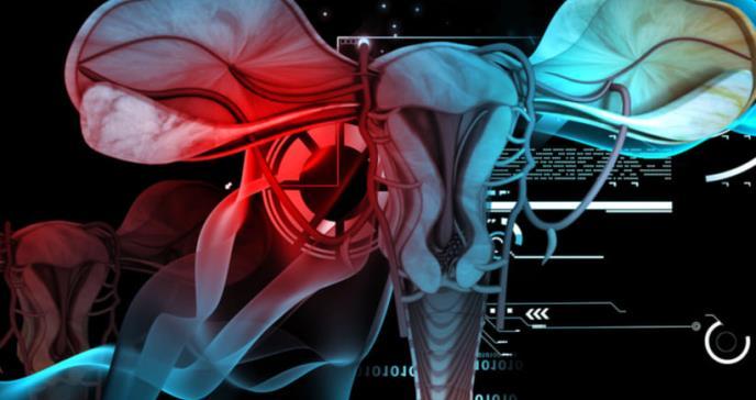 La extirpación de ovarios  aumenta riesgo de insuficiencia renal crónica