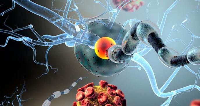 La inmunoterapia podría curar el cáncer cerebral