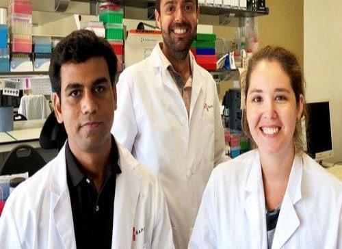 Las estatinas son eficaces en las fases más avanzadas de cirrosis