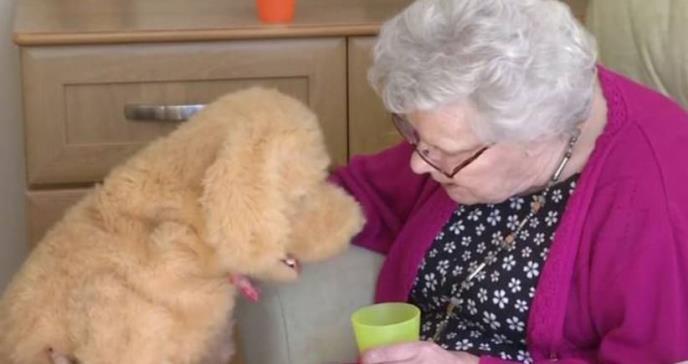 Las mascotas robóticas: fieles compañeras de las personas con Alzheimer