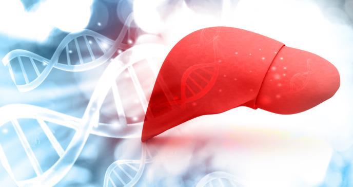 Descubren que el hígado graso causa daños a otros órganos