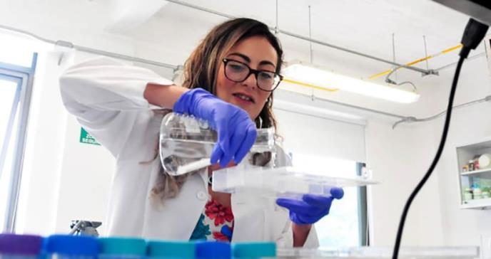 Logran detener en laboratorio la retención de sal en los riñones y la hipertensión arterial
