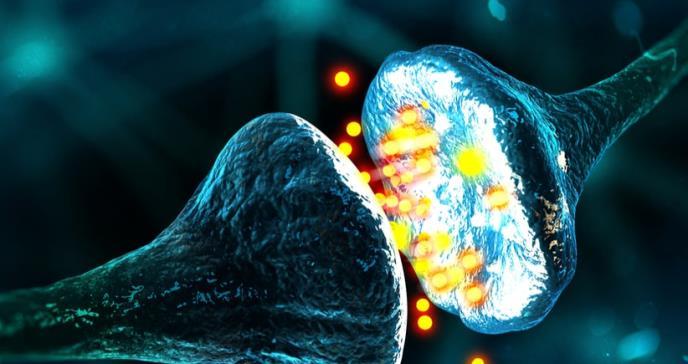 """Logran """"reconectar"""" un grupo de neuronas dañadas por una enfermedad neurodegenerativa"""