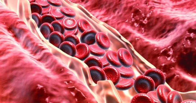 Los métodos detox no son necesarios para el organismo: especialistas