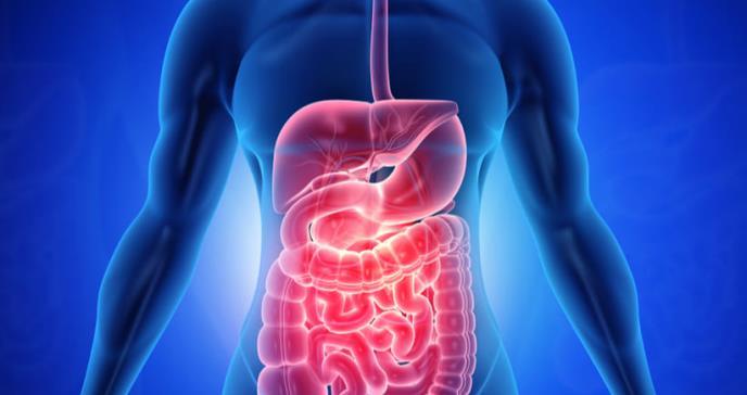 """Los síntomas digestivos fueron la """"queja principal"""" en casi la mitad de los casos de Covid-19, según un pequeño estudio"""