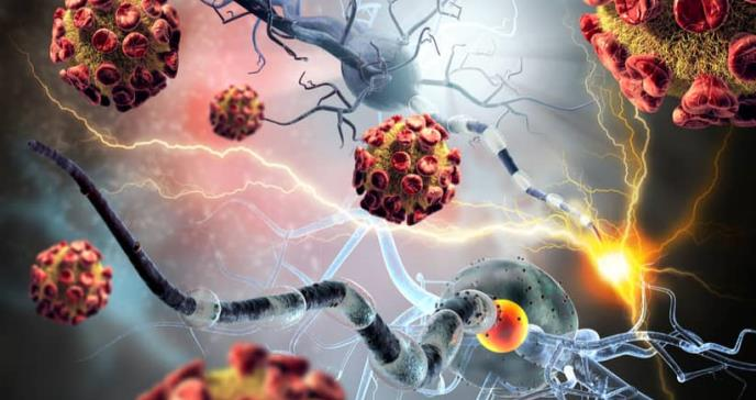 Mejoran la inmunoterapia para el cáncer con bacterias que actúan como un caballo de Troya