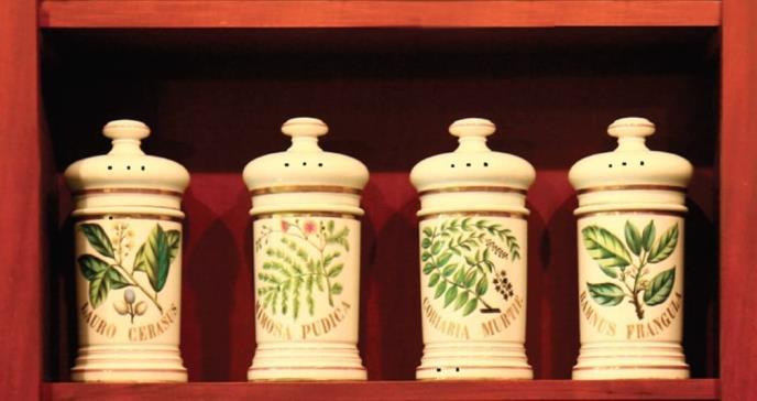 Museo de la Farmacia y Plantas Medicinales