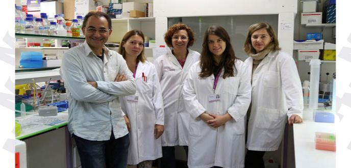 Nanomedicina: nueva respuesta al tratamiento del cáncer de mama y colon