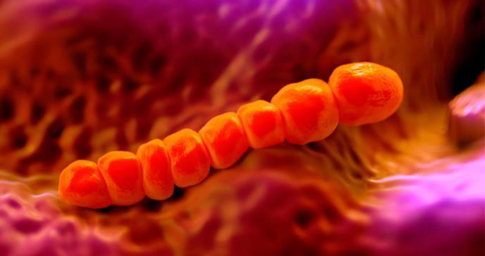 Pacientes en riesgo de enfermedad neumocócica