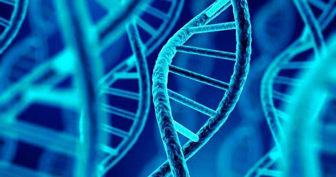 Nueva prueba detectaría rápidamente el daño potencial que causa el cáncer al ADN