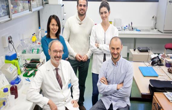 Nueva diana terapéutica para prevenir infartos en pacientes sanos