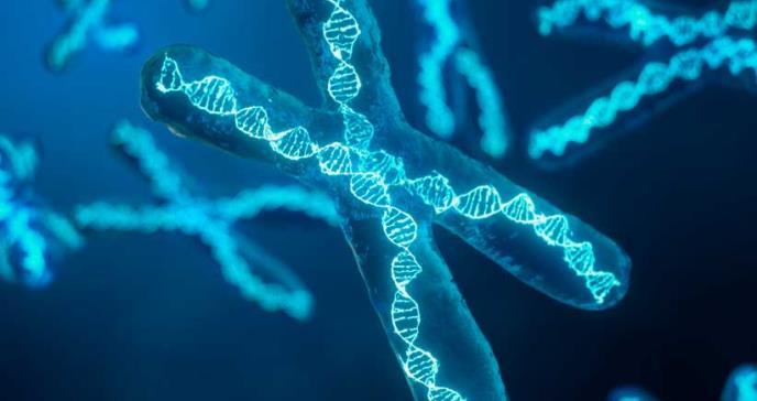 Nuevo método de análisis facial detecta síndromes genéticos con alta precisión