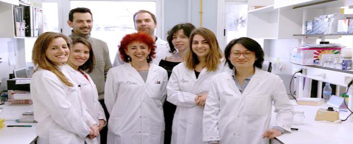 Ocho biomarcadores para evitar pruebas diagnósticas invasivas en Crohn