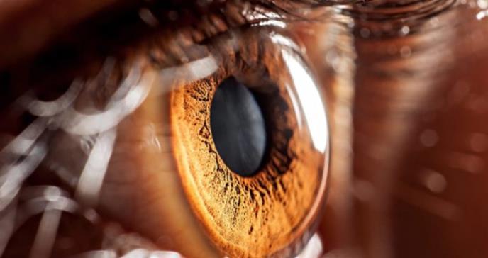 Diseñan lente intraocular para tratar pacientes con cataratas