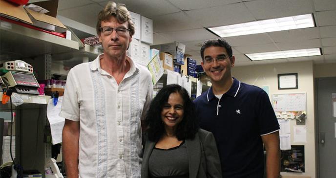 Optimizan en Puerto Rico una molécula contra el cáncer metastásico