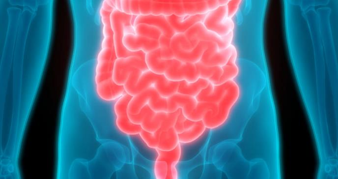 Por qué lo llaman el segundo cerebro y otros 6 datos sorprendentes sobre el intestino