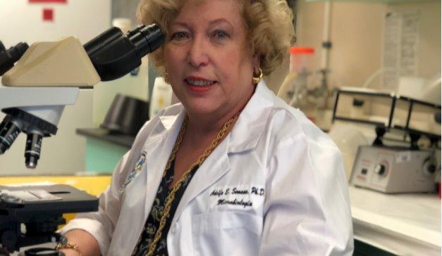 Descubren potenciales compuestos contra la malariaen Puerto Rico