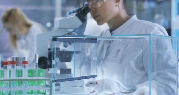 Nuevo fármaco inhibidor del cáncer de pulmón, páncreas e intestino