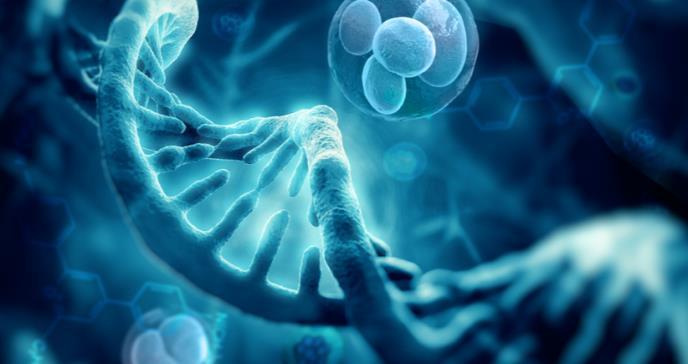 Mutación de un gen sería impulsor en el desarrollo del sarcoma de Ewing