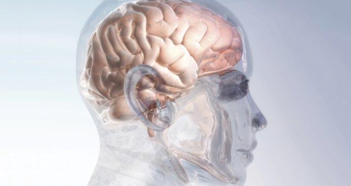 La corriente Ih y su rol potencial en la adicción