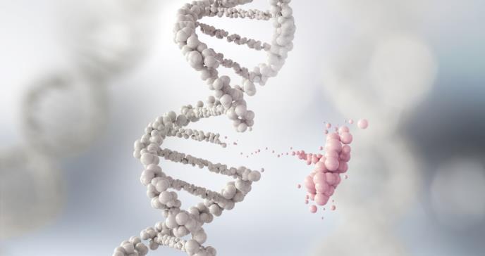 Trastorno genético raro hace que los niños sean demasiado extrovertidos