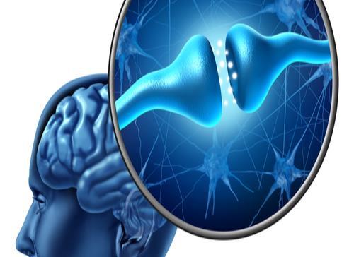 Identifican ácido que podría retrasar la progresión del Parkinson