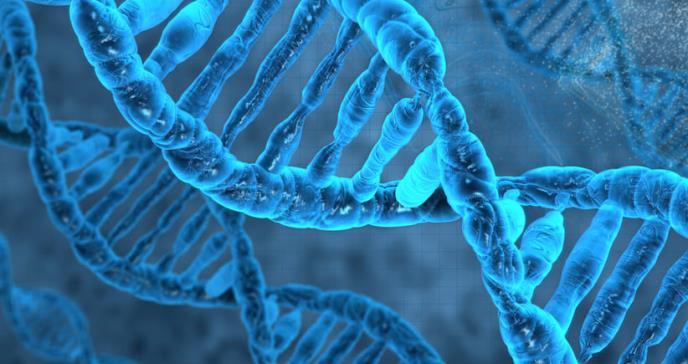 Hallan molécula que prolifera las células tumorales