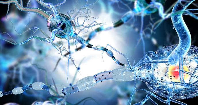 Mecanismos moleculares del sistema opiode