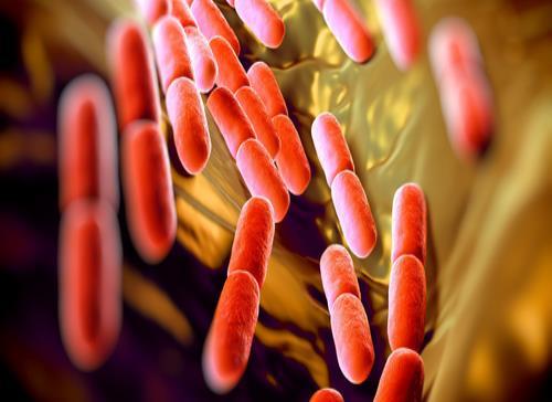 Revelan falta de antibióticos para pacientes pediátricos hospitalizados