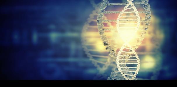 Mutaciones genéticas en el Oeste abren el campo científico de la enfermedad de Wilson en el País