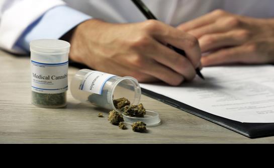 Gobierno confirma reglamento del uso medicinal de los derivados de cannabinoides en Puerto Rico