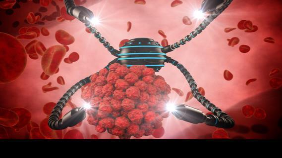 Crean nanorrobots que navegan por el torrente sanguíneo y administran un fármaco a células tumorales