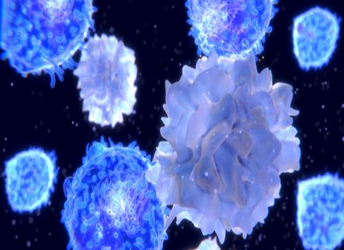 Logran describir genes alterados en linfomas T periféricos de origen poco claro