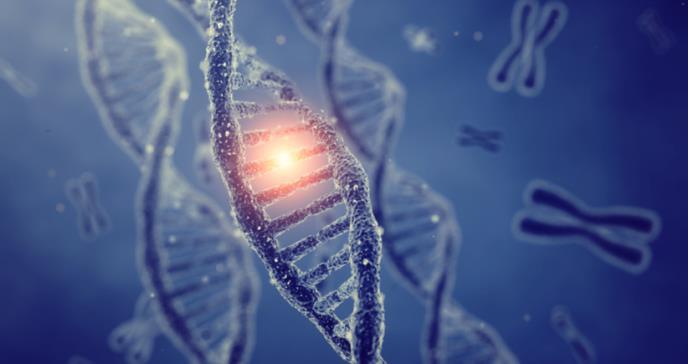 La homosexualidad no estaría relacionada con la genética