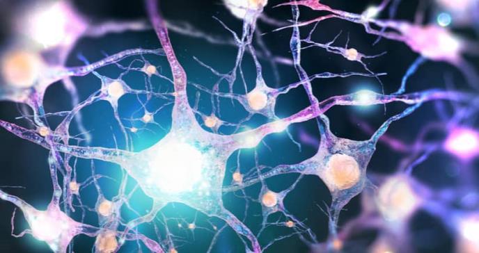 Identifican una nueva diana terapéutica para la depresión