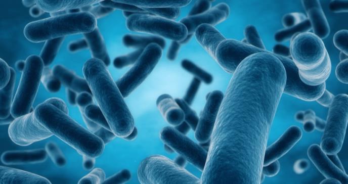 El Plan de Acción Nacional para la Lucha contra las bacterias resistentes a los antibióticos y Puerto Rico