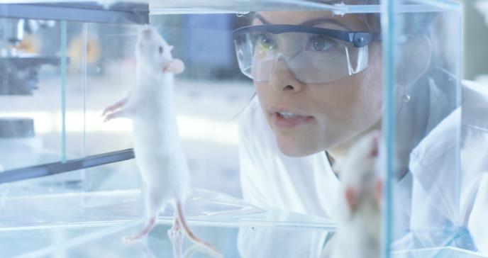 Científicos estudian mundo animal repleto de patógenos que el sistema inmunitario humano nunca ha experimentado