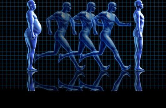 Identifican 8 tipos de cáncer adicionales relacionados con la obesidad y el sobrepeso