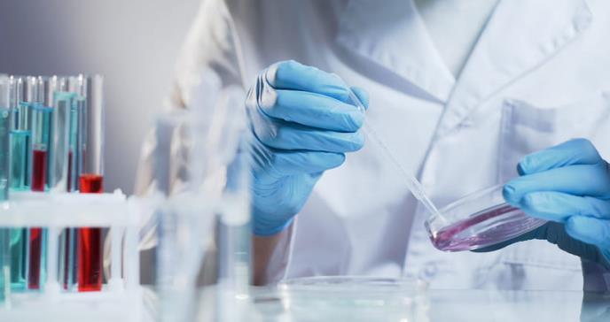 Estudio revela  que la edad biológica del cuerpo puede revertirse