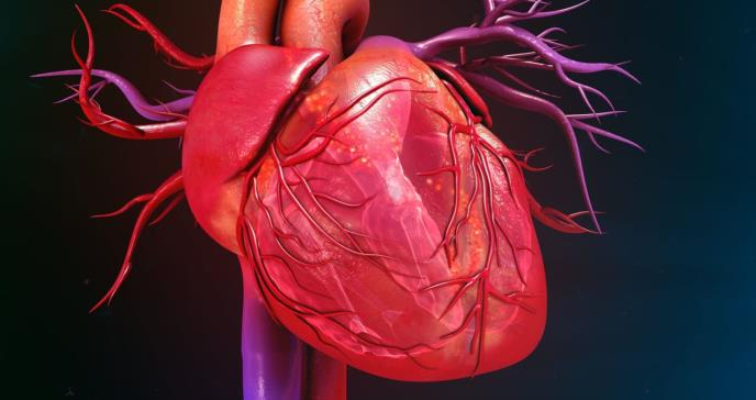 The Arrhytmia Group: Cardiovascular Review 2020