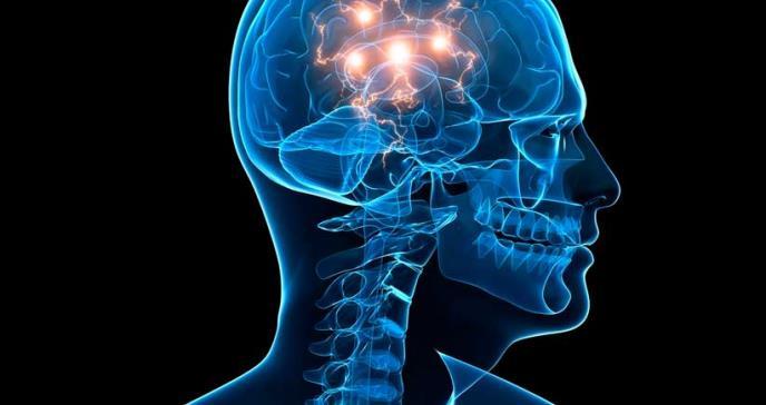 Estudio muestra cómo el cerebro se acopla al ritmo musical