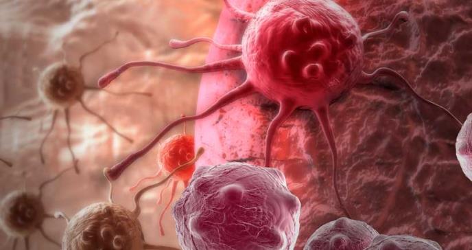Un algoritmo predice cómo interactúan los fármacos en 85 tipos de cáncer