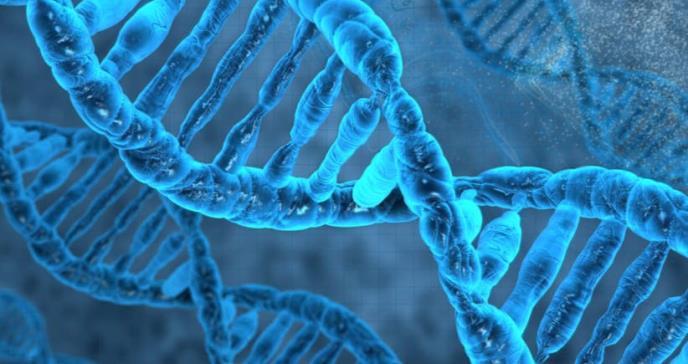 Un estudio genómico atribuye a la anorexia un origen metabólico