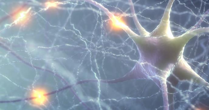 Un implante de grafeno detecta actividad cerebral a frecuencias extremadamente bajas