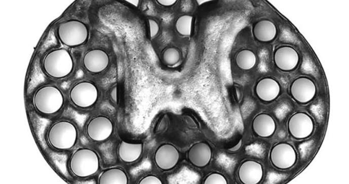 Tecnología de impresión 3D reconecta áreas lesionadas en la médula espinal