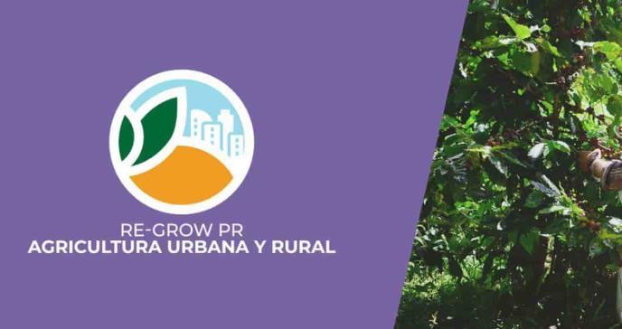 El Fideicomiso para Ciencia y el Departamento de Vivienda ponen mejoras al programa Re-Grow Puerto Rico