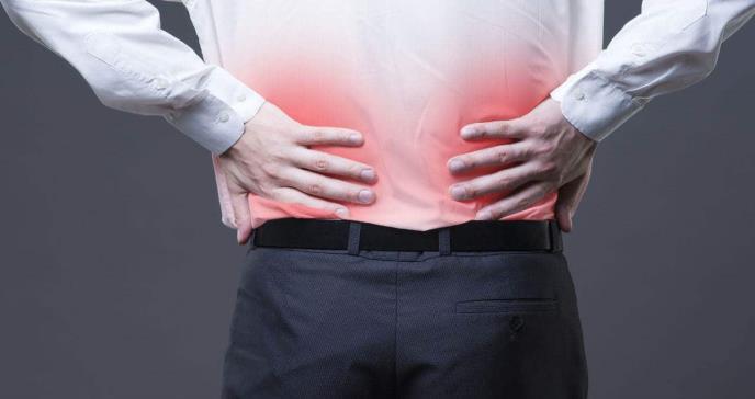 La melatonina protege del daño renal provocado por la obesidad asociada a la diabetes